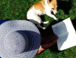 Die 5 besten Bücher für den Sommer